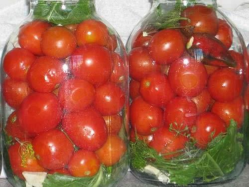 Солёные помидоры рецепт фото